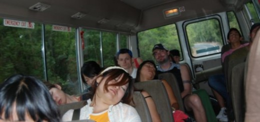 sleeping-bus