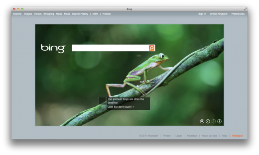 bing video background 520x312 Bing's Video Backgrounds Go Live in Australia and the UK
