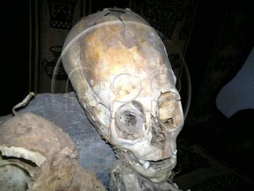 peru alien1 520x390 Scientists think this triangular skull belongs to an alien