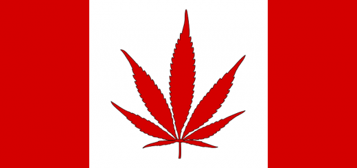 canadian-marijuana-flag