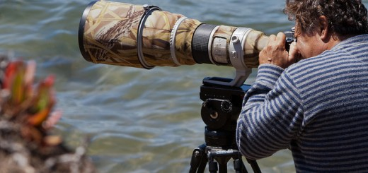 Photographer with 600mm Lens. Morro Bay Scene 2011-06-29