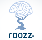 Roozz 12 companies pitch for cash at Startup Bootcamps London investor day