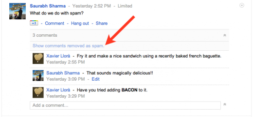 drano11 520x242 Google+ now makes spam comments less visible by grouping and hiding them