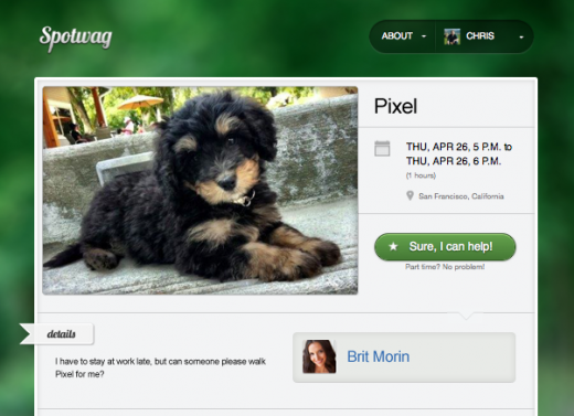 Pet Owner Request 520x377 Pet owners   Spotwag helps you find friends to watch your cuddly companions