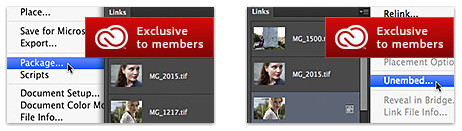 Screen Shot 2012 08 28 at 10.25.29 AM You cant use these new Adobe Illustrator features unless you subscribe to Creative Cloud