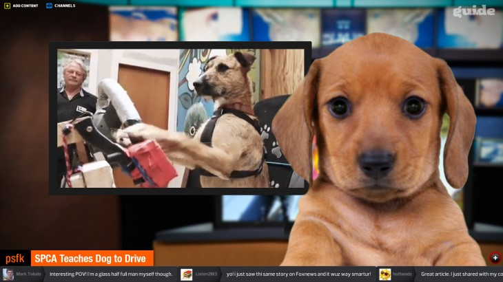 Guide Player Dog 730x410 Guide raises $1m to create a video news channel of websites read by avatars, now in private alpha