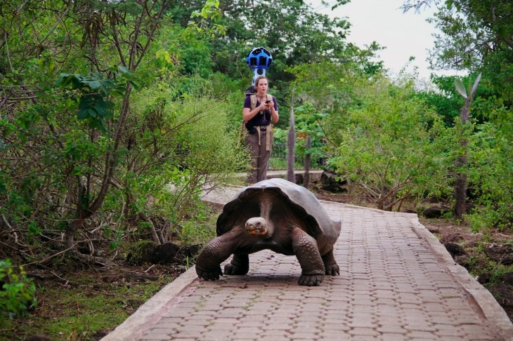 GP2 730x486 Google Maps Street View to get panoramic images from the Galapagos Islands