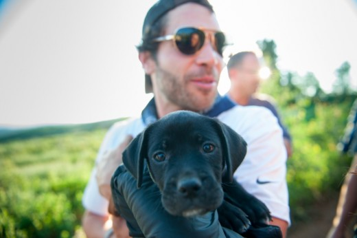 9 puppies were adopted from a local shelter 520x346 Entrepreneurs gather in Eden for the first Summit Outside