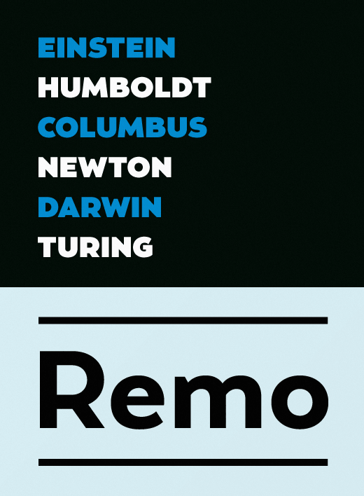 remo The best typefaces of 2013
