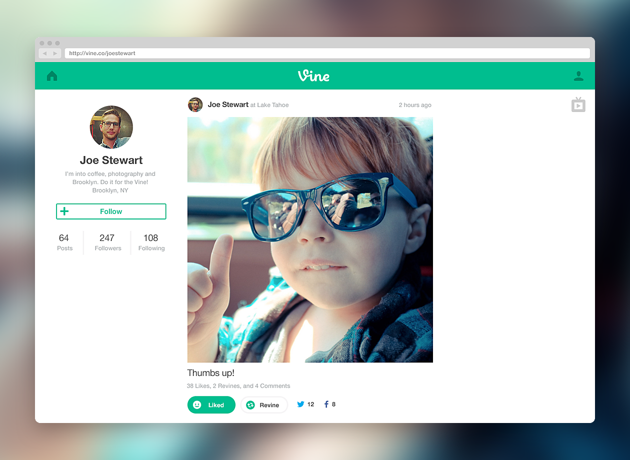 vine web profile Twitter launches Vine for the Web with profiles, home feed, and a TV mode for viewing videos in full screen