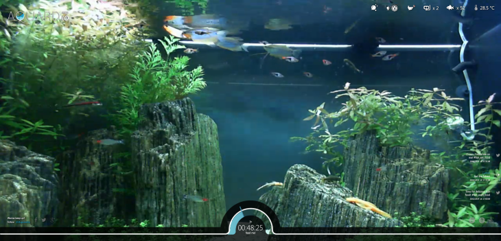 aquardio 730x351 Bored at your desk? Kill a few minutes by feeding some real fish via this Web app