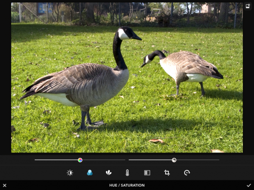 photo 4 520x390 Rookie may just be an ideal replacement for your iPhones built in camera app