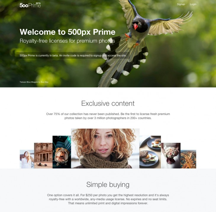 resource 730x717 500px launches its Prime licensing store, increases cut for photographers from 30% to 70%